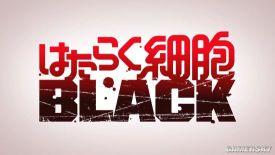 《工作细胞BLACK》PV2释出:偏成人向的细胞故事
