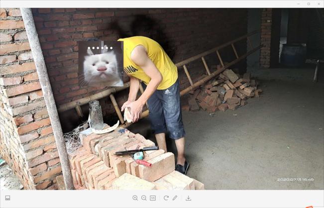 猫十七:新房里面拍照片