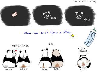 旅日20年熊猫即将回国,日本民众不舍:中国再给两只行不?
