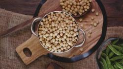 美国高端宠物粮品牌卡比 携首发新品亮相第23届亚宠展