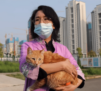 雷神山流浪小奶猫一年后成胖橘!名字更霸气:雷神喵
