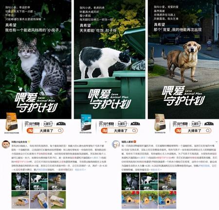 """天猫国际关爱宠物公益在行动,爱肯拿以""""精细化喂养""""守护宠物健康"""
