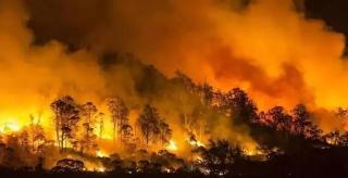 在把地球搞崩之前,气候变化会先把医疗系统压垮