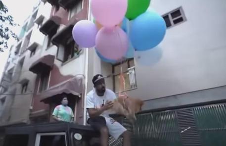 印度网红给狗子身上绑气球,想让它飞天…被警察抓了