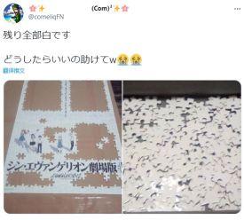 网友拼《EVA剧场版》拼图崩溃:全是白色可咋拼啊!